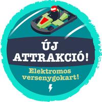 Elektromos versenykokart