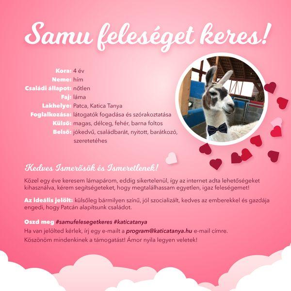 Samu feleséget keres